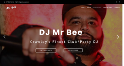 DJ MR Bee Club and Party
